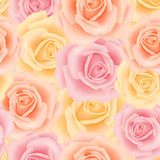 Seamless pattern with rose flowers. For background design Stock Photography