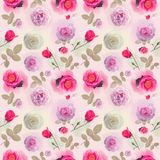 Seamless   pattern with rose flowers. Endless texture for your design Royalty Free Stock Image