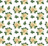 Seamless pattern with rose flowers Stock Photos