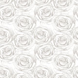 Seamless pattern with rose Stock Image