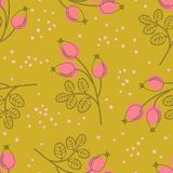 Seamless pattern with rose hip branches. Vector illustration Stock Photos