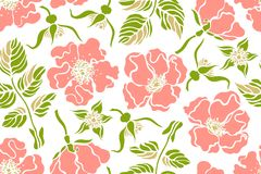 Seamless pattern with rose hips wild roses. Botanical background. Vector illustration Royalty Free Stock Images