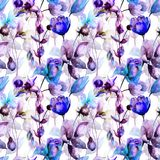 Seamless pattern with Rose, Tulip and Narcissus flowers. Watercolor illustration Stock Photo