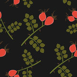 Seamless pattern rosehip Royalty Free Stock Images