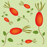 Seamless pattern with rosehip berries Royalty Free Stock Photography