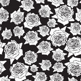 Seamless  pattern roses Stock Images