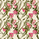 Seamless pattern - roses Stock Images