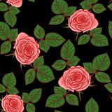 Seamless pattern with roses