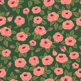 Seamless pattern of roses. Stock Photography