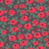 Seamless pattern of roses. Stock Images