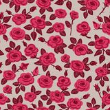 Seamless pattern of roses. Royalty Free Stock Photo
