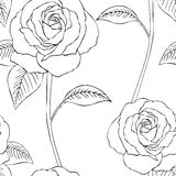 Seamless pattern- roses black & white. Seamless pattern of lineart roses on white background Royalty Free Stock Photos