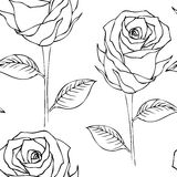 Seamless pattern- roses black & white. Seamless pattern of lineart roses on white background Royalty Free Stock Image