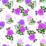 Seamless pattern with roses3-01. Bouquet.Beautiful seamless pattern with pink,violet,purple roses on a white background.Vector illustration in the style of Stock Photography