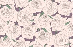 Seamless pattern of roses. Buds of roses Stock Photo