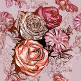 Seamless pattern with roses and Chamomile Royalty Free Stock Image