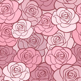 Vector seamless pattern with roses. Stock Photos
