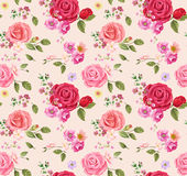 Seamless pattern with roses. Floral background. design composition Stock Photography