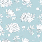 Seamless pattern with roses. Flower background. Seamless pattern with white roses. Flower background stock illustration