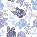 Seamless pattern of  roses flower Stock Photography