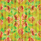 Seamless pattern with roses. Stock Photography
