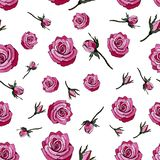 Seamless pattern of roses. Roses with leaves. royalty free illustration
