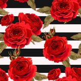 Seamless pattern with roses ground Royalty Free Stock Photos