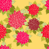 Seamless pattern. Roses. Seamless pattern made of pink roses Stock Images