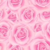 Seamless pattern with roses. Seamless pattern with rose flowers for background design Royalty Free Stock Images