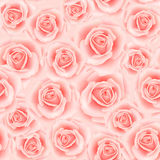 Seamless pattern with roses. Seamless pattern with rose flowers for background design Royalty Free Stock Photo