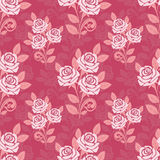 Seamless pattern with roses in shades of pink Stock Photography