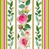 Seamless pattern with roses and stripes. Royalty Free Stock Image