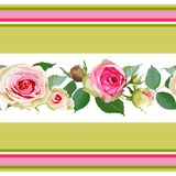Seamless pattern with roses and stripes. Royalty Free Stock Photos