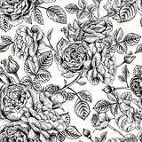 Seamless pattern with roses. Royalty Free Stock Photography