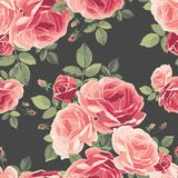 Seamless pattern with roses. Vintage floral background. Stock Photography
