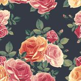Seamless pattern with roses. Vintage floral background. Royalty Free Stock Photo