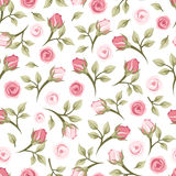 Seamless pattern with roses. Vintage seamless pattern with small pink roses on a white background Royalty Free Stock Images