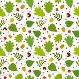 Seamless pattern with rowan berries, leaves, acorn, chestnut. Vector set. Stock Photo