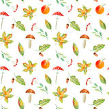 Seamless pattern of a rowan, floral, basket, berries,maple,boletus, apple and agaric. Royalty Free Stock Photography