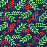 Seamless pattern with rowans and leafs Stock Photography