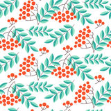 Seamless pattern with rowans and leafs Royalty Free Stock Photos