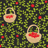Seamless pattern with russian background with red northern berries. Royalty Free Stock Photos