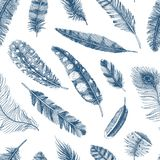 Seamless pattern. Rustic realistic feathers of different birds, owls, peacocks, ducks. engraved hand drawn in old. Vintage sketch. Vector illustration Royalty Free Stock Image