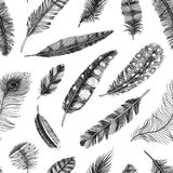 Seamless pattern. Rustic realistic feathers of different birds, owls, peacocks, ducks. engraved hand drawn in old. Vintage sketch. Vector illustration Stock Photo