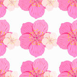 Seamless pattern Sakura is blossom couple. vector illustration Royalty Free Stock Photography