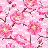 Seamless pattern with sakura or cherry blossom. Floral japanese ornament of blooming flowers Stock Images