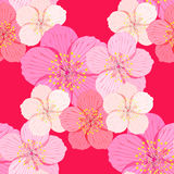 Seamless pattern Sakura is couple flower on a red background.  Stock Photography