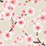 Seamless pattern with Sakura. EPS 10 Stock Photo