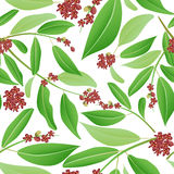 Seamless pattern sandalwood Stock Photos