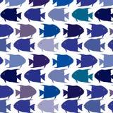 Seamless  pattern school of fish Stock Photos